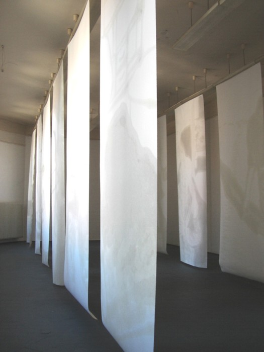"""in side"",  2005,  sunflower oil on paper,  325 x 125 cm,  12 elements"